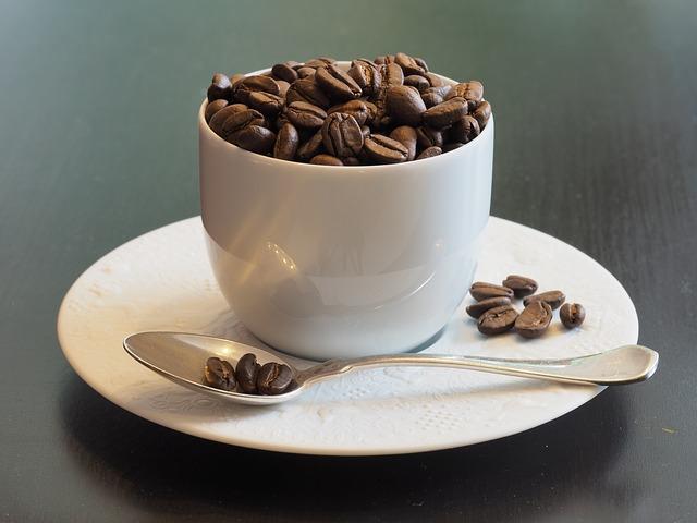 お花見やバーベキューなどアウトドアでコーヒーを楽しむ6つの道具